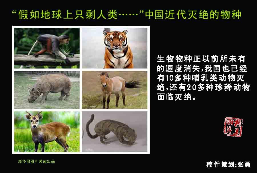 地球就已经进入了第六次物种大灭绝