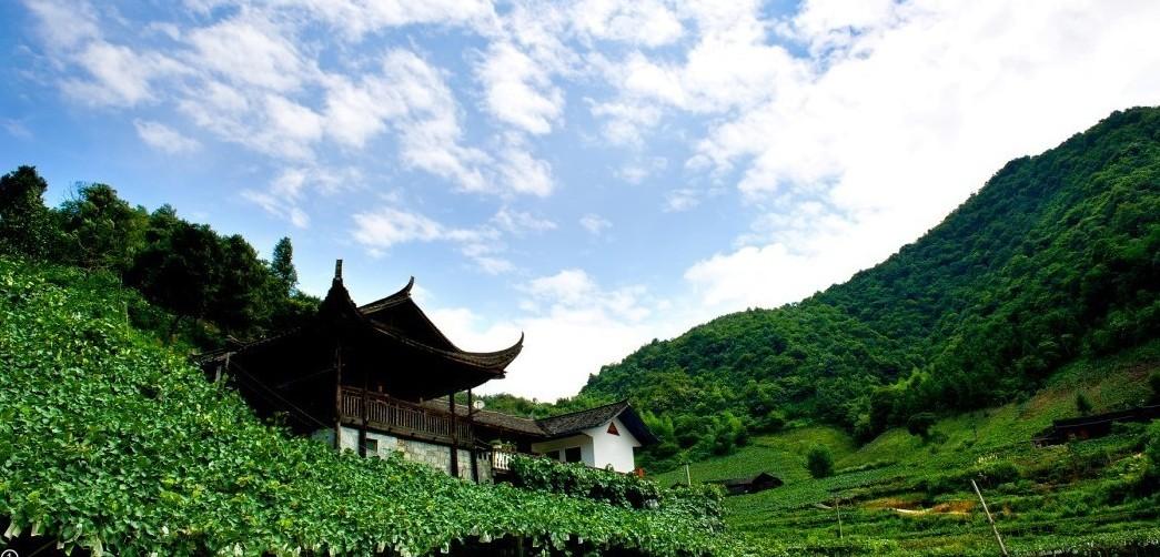 中方全力打造中国南方最美葡萄沟