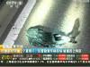 银川交警处理交通事故时拒受贿 拉扯间被撞身亡