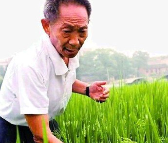 2004感动中国年度人物袁隆平
