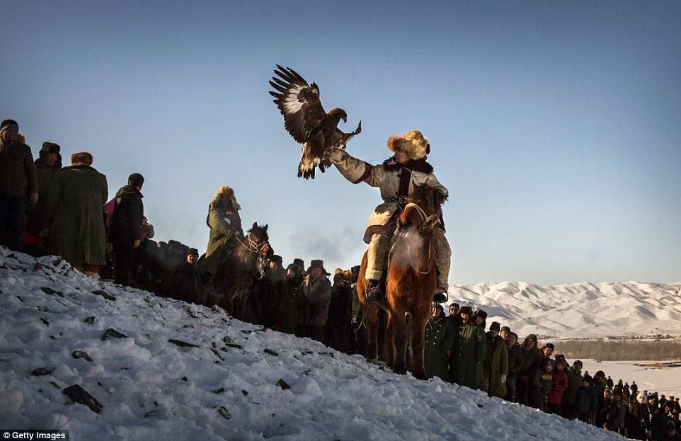 外媒拍中国最后的金雕捕猎民族