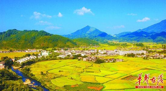 湖南醴陵农村房屋图片