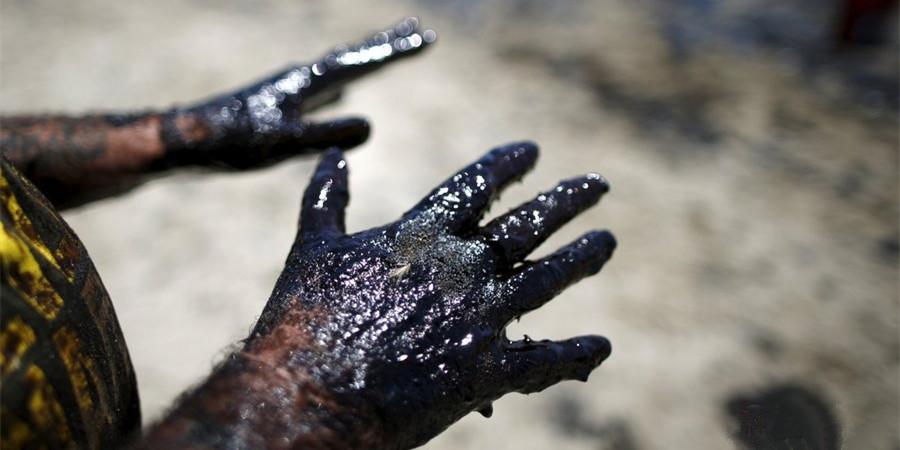 美国加州石油泄漏污染海面/组图