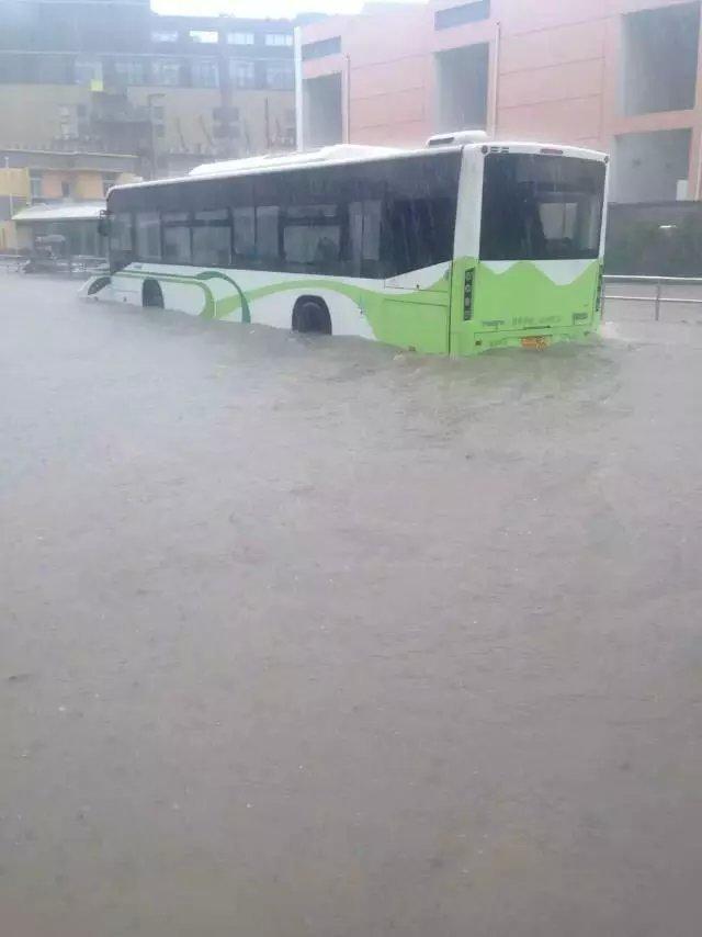 上海暴雨牌照_上海暴雨积水 空姐\