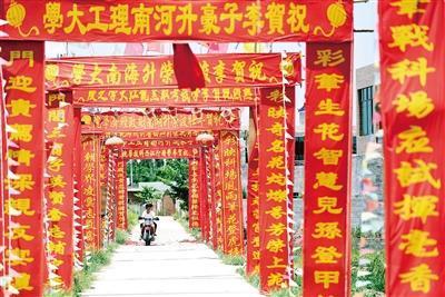 村民祝贺学子金榜提名 大红条幅挂满村道(图)