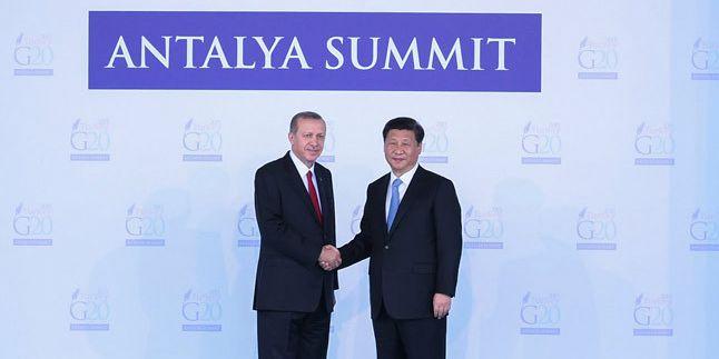 习近平出席二十国集团领导人第十次峰会