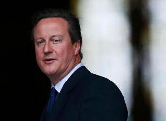 卡梅伦:将说服英国议会 空袭叙境内IS目标(图)