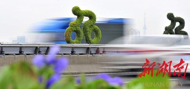 """该桥从10月中旬开始立体绿化改造,设计上采用""""彩虹之路""""概念,使用多年"""