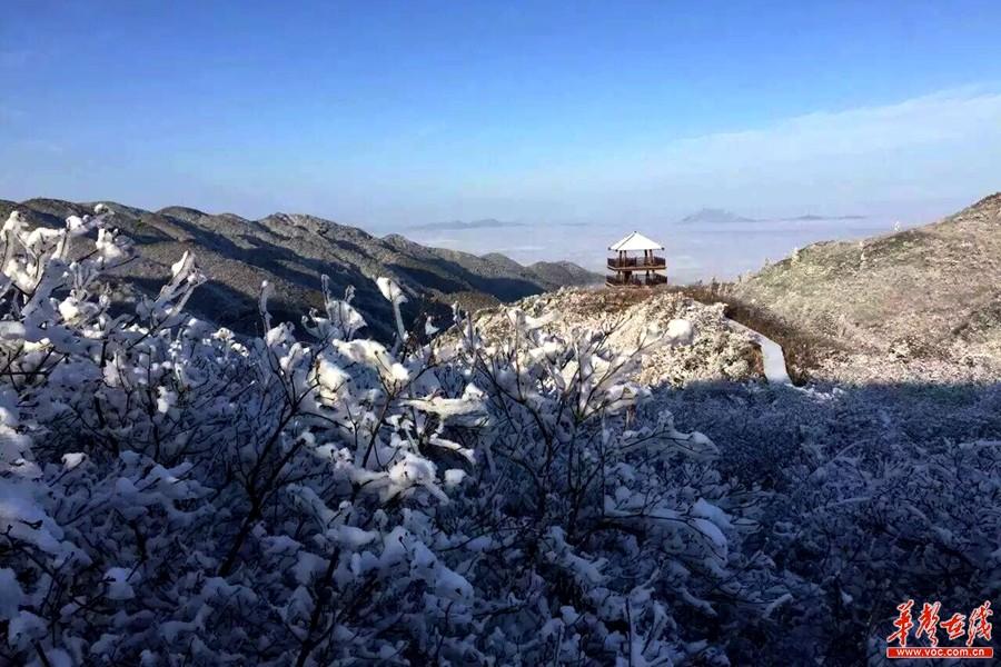 1月15日,大围山景区雪后初晴美景如画,银装素裹分外妖娆.
