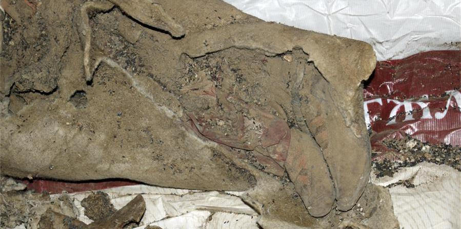 蒙古国西部发掘出千年干尸