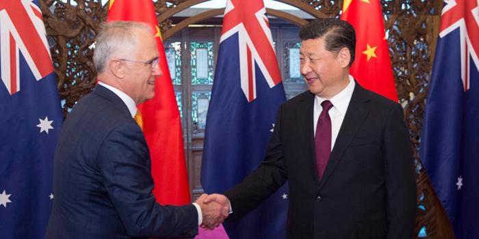 习近平会见澳大利亚总理特恩布尔