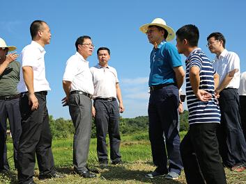 【治国理政新实践▪湖南篇】土地流转转活农业 转富农民