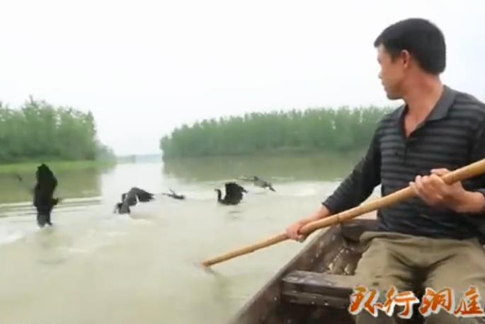 视频:自然渔村的自在生活