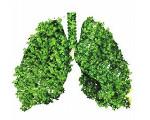 湖南贫困尘肺病患者可在定点医院获得免费救助