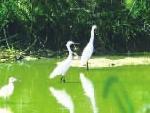 湿地公园 孩子的乐园
