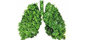 #公益#湖南启动救治贫困尘肺病患者行动