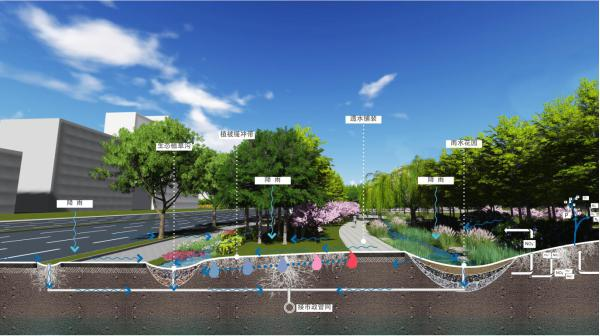 v绿色丨基于绿色城市背景下的会计海绵景观设计房地产街道设计费图片