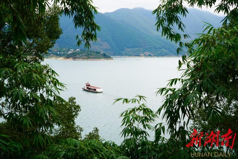 黄草镇,镶嵌在东江湖畔的夜明珠