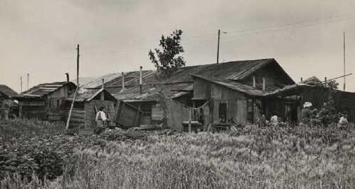 1950年代破败的日本