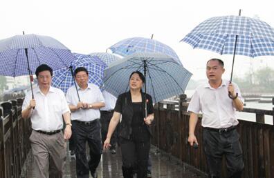 益阳市党政代表团来长沙望城区乔口镇考察新农村建设