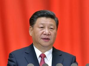 以习近平同志为核心的党中央治国理政评述
