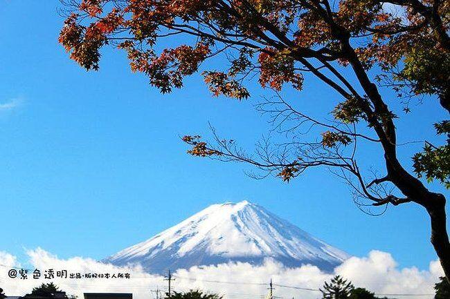 富士山下吃喝玩乐一日游:谁能凭爱意要富士山私有