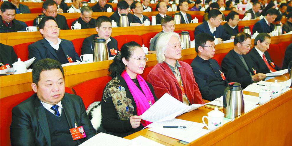 省政协委员分组讨论政协常委会工作报告和提案工作报告