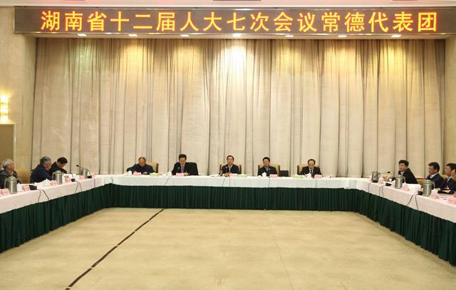 许达哲参加常德代表团审议