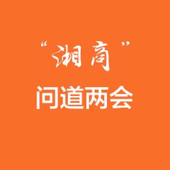 """""""湘商""""问道两会"""