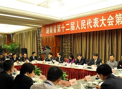 湖南省人大代表分组审议省人大常委会工作报告