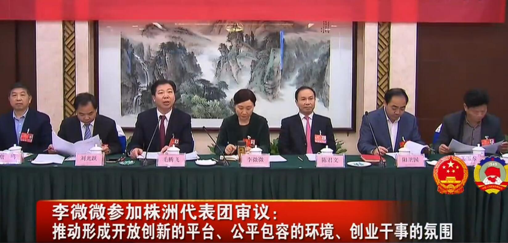 李微微参加株洲代表团审议