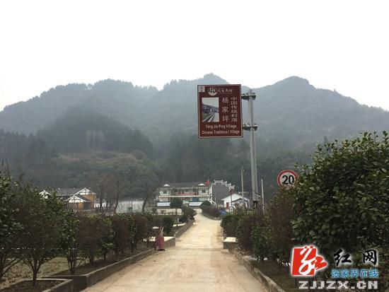 乡村旅游_工作收入证明范本_张家界乡村旅游收入