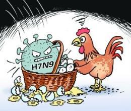 郴州救治一感染H7N9禽流感患者