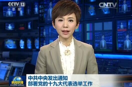 中组部就党的十九大代表选举工作答记者问
