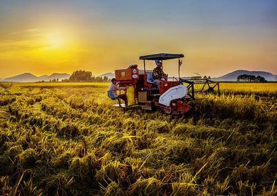 """""""三个着力""""看湖南:农业现代化 开启新篇章"""