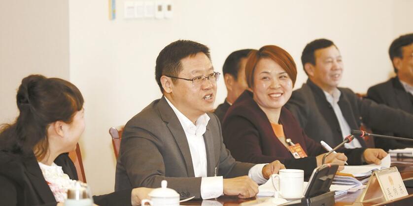 湖南代表团在分组审议中发言