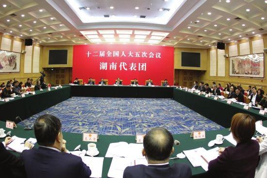 湖南代表团举行第八次全体会议 张平杜家毫许达哲等参加