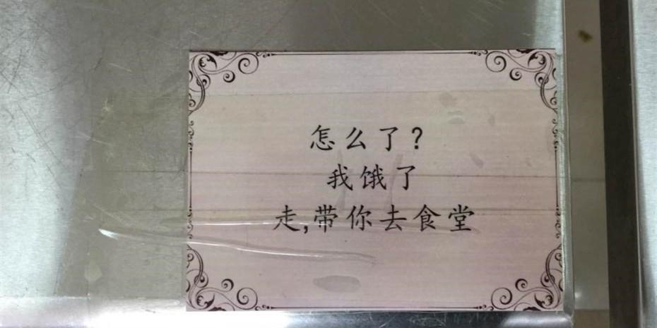 """西安高校食堂现三行情书 演绎""""食堂爱情故事"""""""