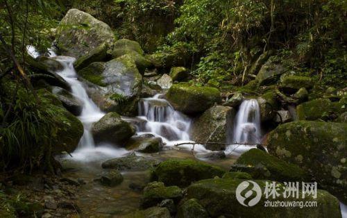 5公里,茶陵县东阳湖国家湿地公园5公里,芦淞区大京湖风景名胜区5.