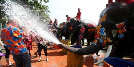 """泰国开启泼水节狂欢 大象喷水游客""""遭殃"""""""