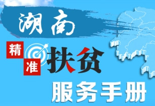 H5:湖南精准扶贫服务手册