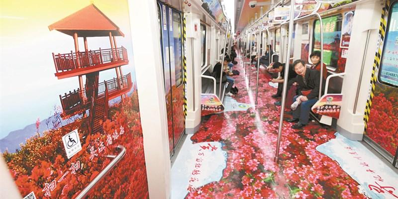 长沙地铁杜鹃花专列上线