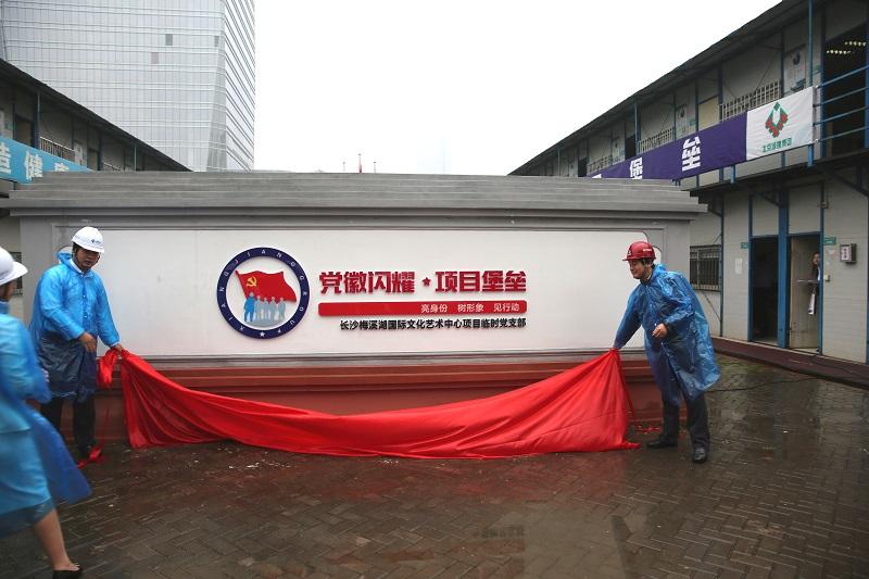 长沙梅溪湖国际文化艺术中心项目启动基层党建创新示范点工作