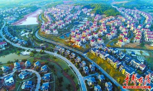 4月2日,夕阳照射下的宁乡金洲镇关山村,楼房林立.黄智斌 摄
