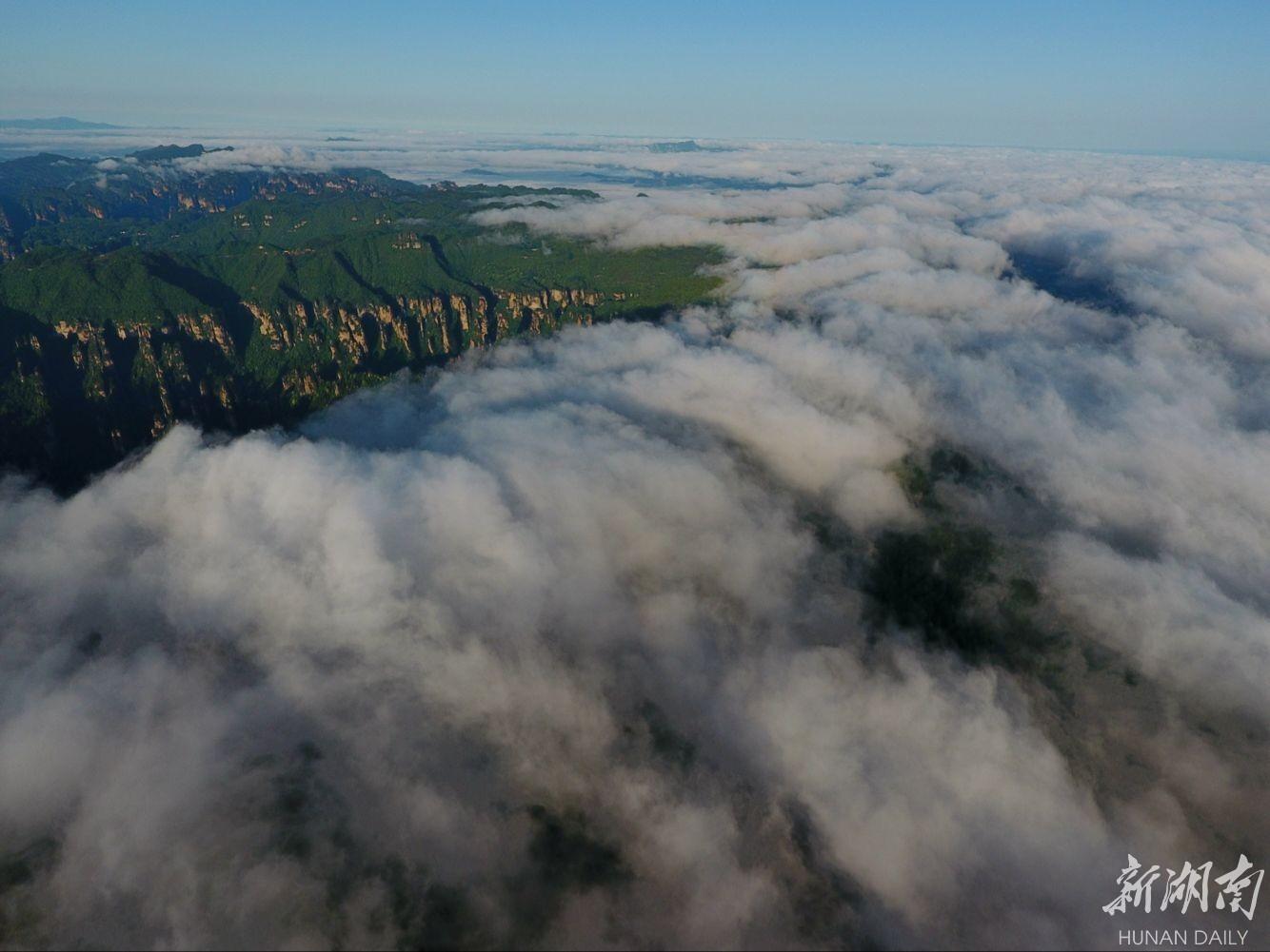 雨过天晴的湖南张家界武陵源天子山风景区出现波澜壮阔的云海景观.