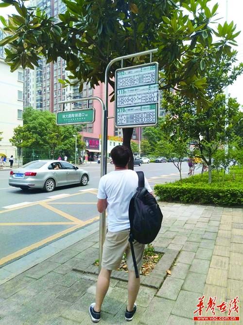 长沙有不少超过两米的公交站牌 部门:超1.7米都会要整改