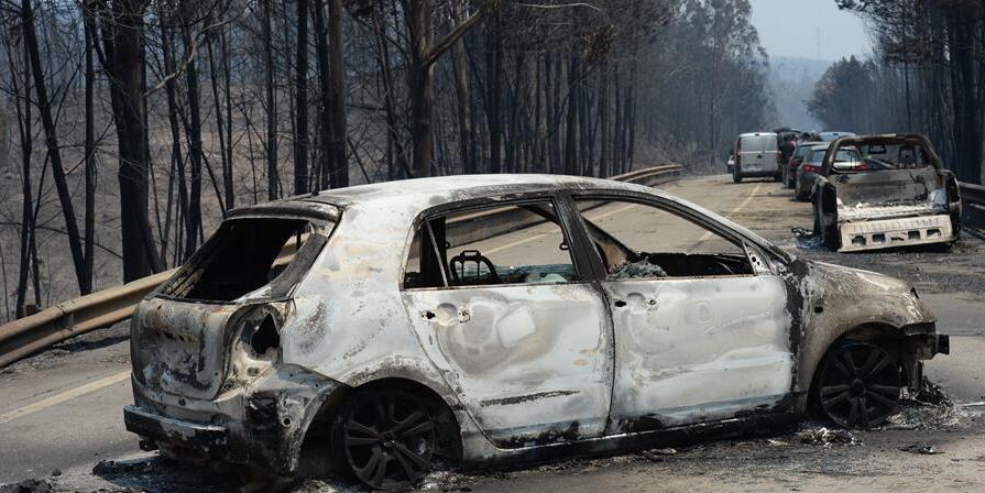 葡森林火灾造成至少62人死亡 政府宣布进入紧急状态