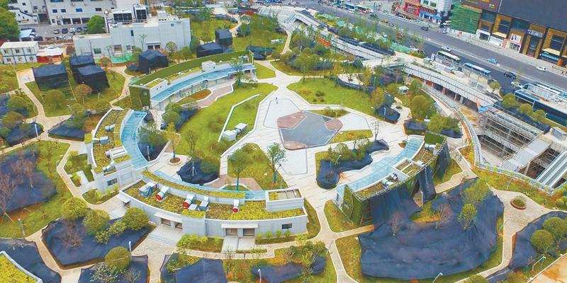 长沙五一绿化广场绿化基本完成