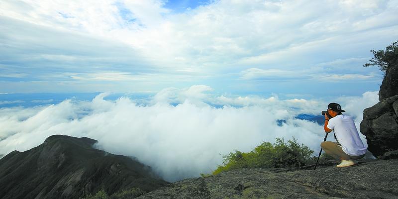 如梦如幻!南岳衡山云雾进入秋季观赏期