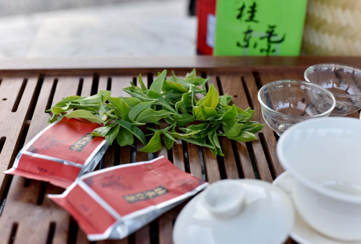 【全国网媒湖南行】桂东路上茶飘香
